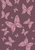 Vector background with butterflies Royalty Free Stock Image