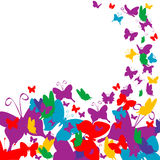 Vector  background. Vector butterflies background beautiful variegated colors Stock Photo