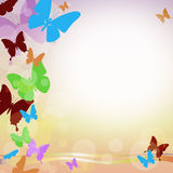 Vector background with butterflies. Vector background with brightly colored butterflies, lines and the inscription Royalty Free Stock Photo