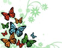 Vector background with butterfly Royalty Free Stock Image