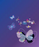 Vector background with butterfly. Butterfly background banner wallpaper abstract bubble Stock Photography