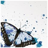 Vector background with butterfly Stock Images