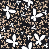 Vector background butterfly Royalty Free Stock Image