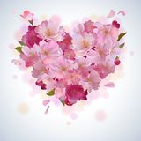Vector background with cherry petal heart Royalty Free Stock Photos
