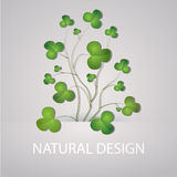 Vector background with clovers Stock Photography