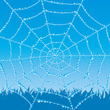 Vector background. Cobweb. Stock Images