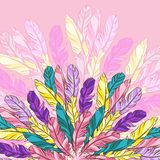 Vector background with colored feathers Stock Images