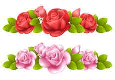 Vector background with colored roses. Royalty Free Stock Image