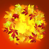 Vector background with colorful autumn leaves, banner, card temp. Late Royalty Free Stock Photos