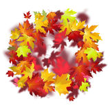 Vector background with colorful autumn leaves, banner, card temp. Late Royalty Free Stock Photography