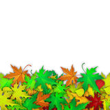 Vector background with colorful autumn leaves. Autumn card template, banner advertising vector illustration with colorful autumn leaves and white banner for your Royalty Free Stock Photos