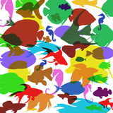 Vector background with colorful fish. Sea horses on a white background Royalty Free Stock Image