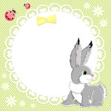 Vector background with bunny Royalty Free Stock Photos