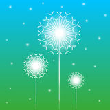 Vector background with dandelion Stock Image