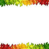 Vector background decorated with colorful autumn leaves. Card, banner Royalty Free Stock Image