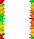 Vector background. Decorated with colorful autumn leaves, card, banner Stock Image