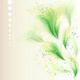 Vector background with delicate flowers Royalty Free Stock Images