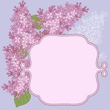Vector background for design with flowers of lilac Stock Photos