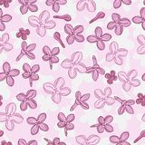 Vector background for design with flowers of lilac Stock Photography