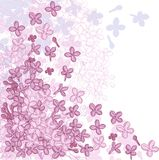 Vector background design with flowers of lilac Royalty Free Stock Image