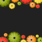 Vector background with different slice citruses. (lemon, lime, grapefruit, orange) on a black background. Space for text royalty free illustration