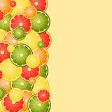 Vector background with different slice citruses. Space for text royalty free illustration