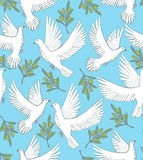 Vector background with doves and olive branches Royalty Free Stock Photos