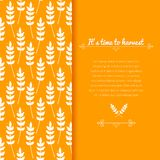 Vector background with ears of wheat Royalty Free Stock Photos