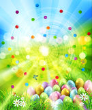 Vector background. Easter eggs in green grass with white flowers. Easter eggs in green grass with white flowers, butterflies on blue, blurred , natural Stock Images