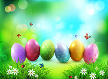 Vector background. Easter eggs in green grass with white flowers. Butterflies on blue, blurred , natural background Royalty Free Stock Photography