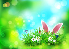 Vector background for Easter. Template. Rabbit ears sticking out vector illustration