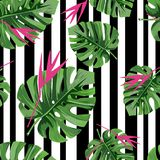 Exotic jungle plant tropical palm leaves with pink flowers and black stripes. Vector background. vector illustration