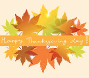 vector background with fall leaves Stock Photography
