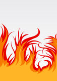 Vector background with fire Stock Images