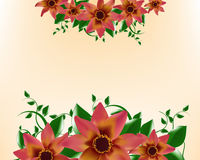 Background Flower template design Stock Image