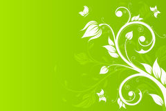 Vector Background with flowers and butterfly Royalty Free Stock Images