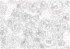 Vector  background of flowers decorative pattern Stock Images