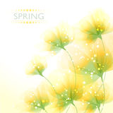 Vector background with flowers Stock Photo