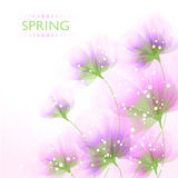 Vector background with flowers Royalty Free Stock Photos
