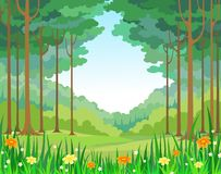 Vector background forest Royalty Free Stock Photos