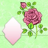 Vector background with frame and rose Royalty Free Stock Photos