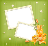Vector background with frames for photos, lilies Royalty Free Stock Image