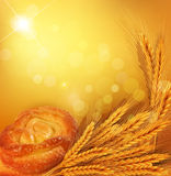Vector background with gold ears of wheat, bun, su. The vector background with gold ears of wheat, bun, sunrays Royalty Free Stock Photography
