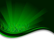 Vector background with grass Royalty Free Stock Photography