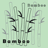 Vector background with gray bamboo Stock Image