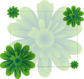 Vector background with green flowers. Royalty Free Stock Photos