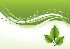 vector background with green leaves Stock Photography