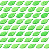 Vector background from green leaves Royalty Free Stock Images