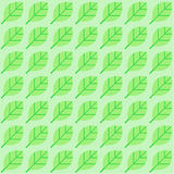 Vector background from green leaves Royalty Free Stock Photography
