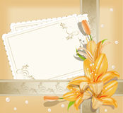 Vector background  with  greeting cards, lilies Stock Photos